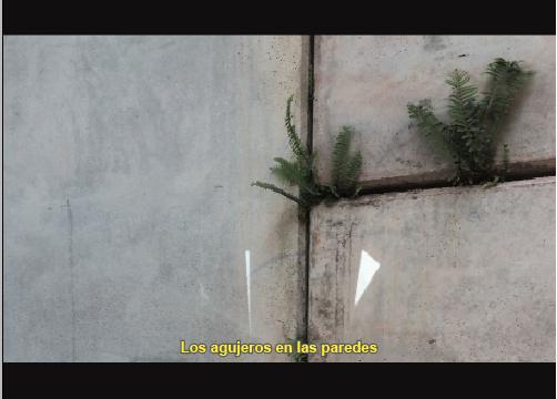 Elise Villatte // Blog // Medellin